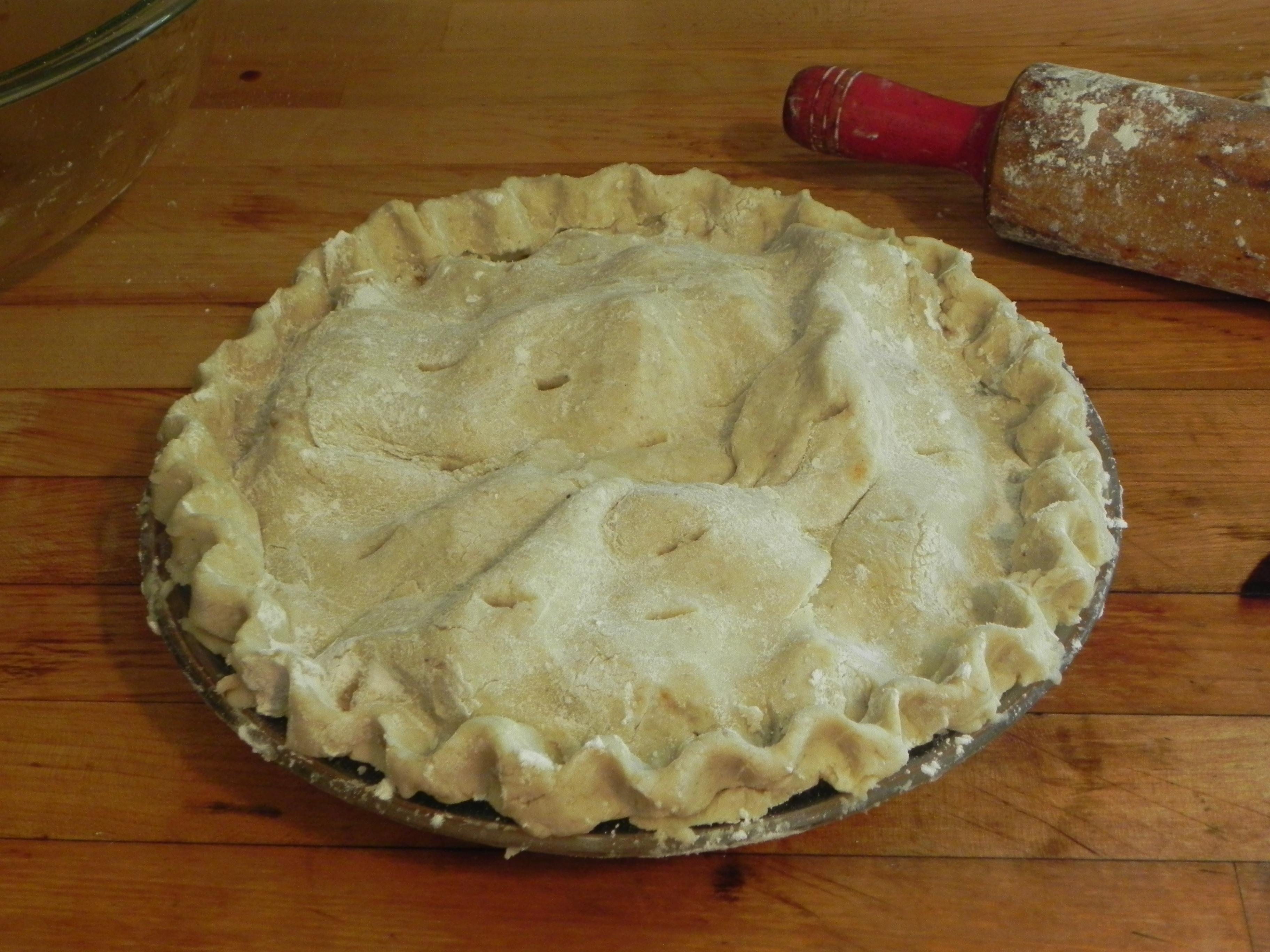dscn3463 Gluten Free Flakey Pastry Crust Recipe
